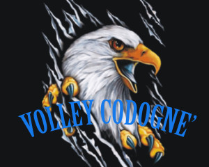 AQUILA VOLLEY